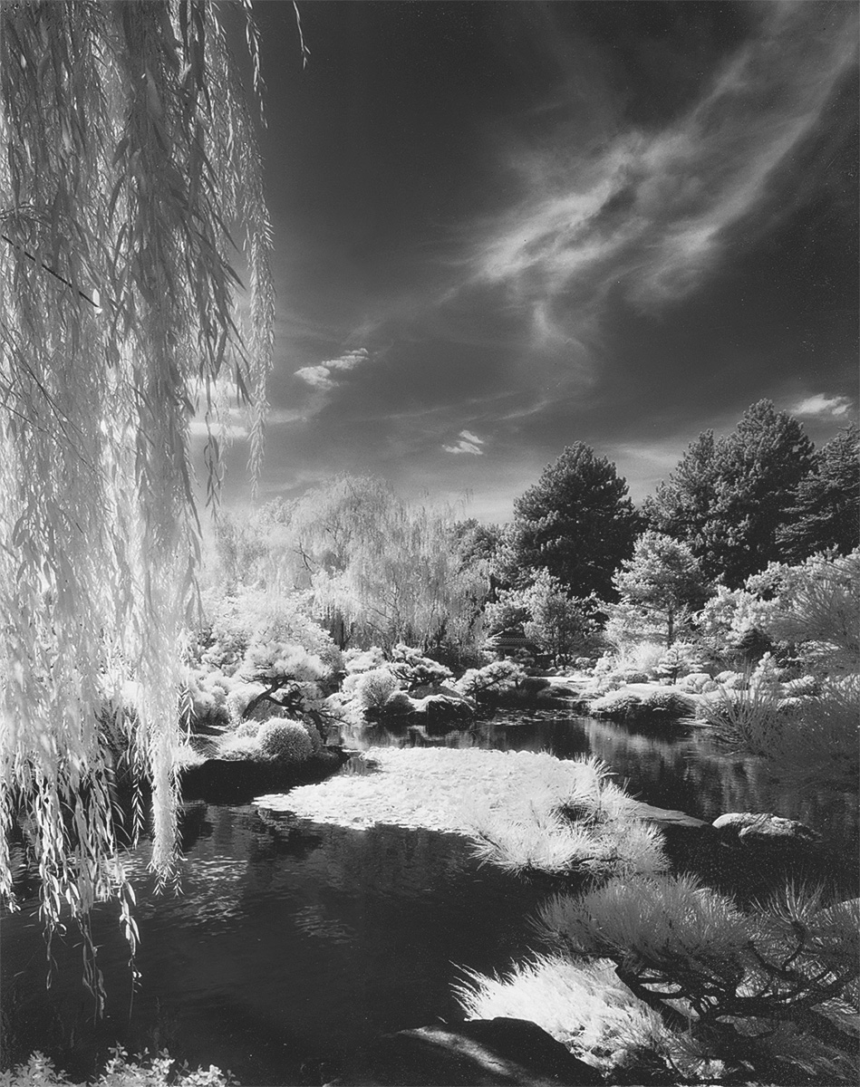 infrared film denver botanical gardens